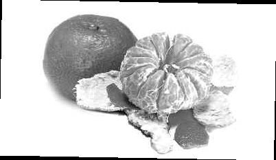 橘子的素描步骤