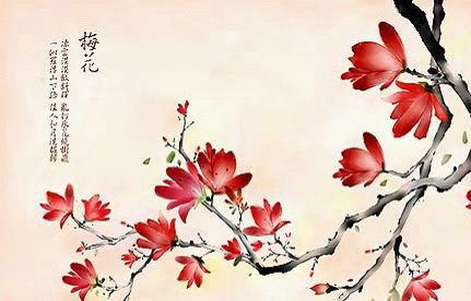 韩式装饰壁纸 打造自然风背景墙图片
