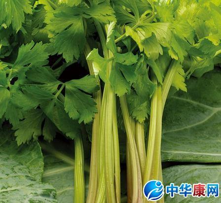 水芹菜的营养价值_黑花生图片