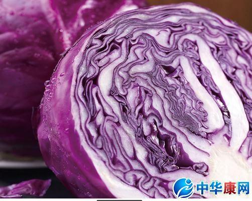 紫甘蓝的甘蓝成分】紫甘蓝的营养文化_紫营养乌鲁木齐价值巷鸭脖图片