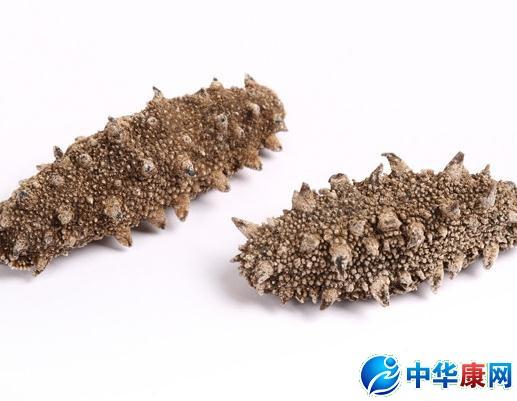 【即食图片】即食河蟹海参介绍_即食海参的营海参池PH值图片