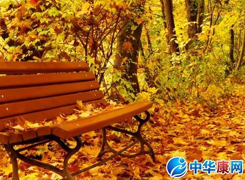 关于秋天的成语 关于秋天的诗句 关于冬天的成语